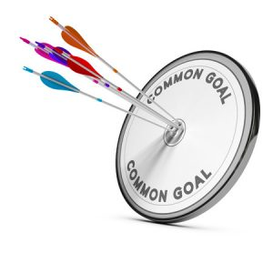 diana objetivos